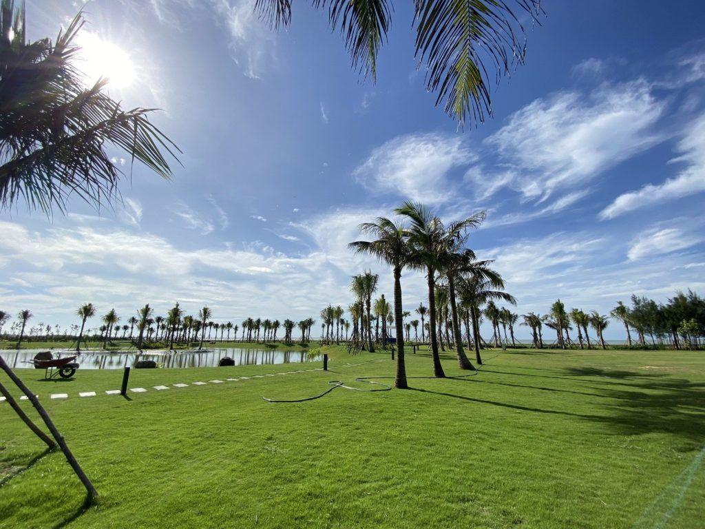 Khu vực nhà mẫu được phủ cỏ xanh thuộc Venezia Beach
