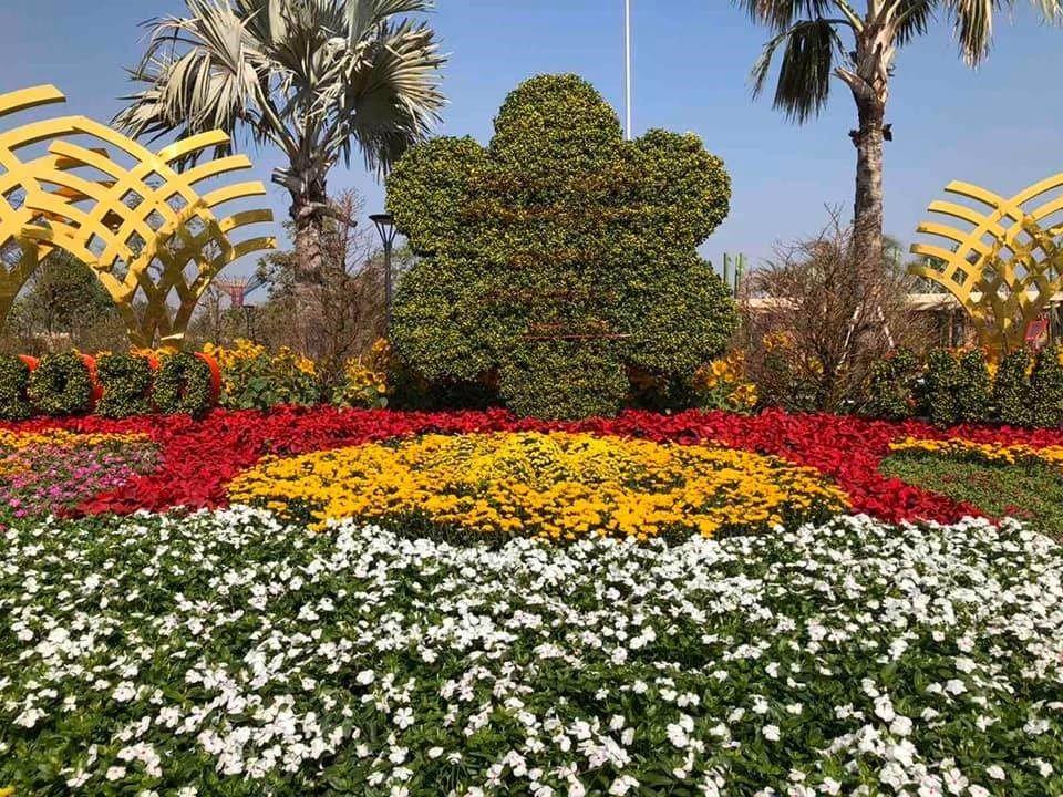 Lễ hội hoa xuân tại công viên ánh sáng 36 hecta quận 9