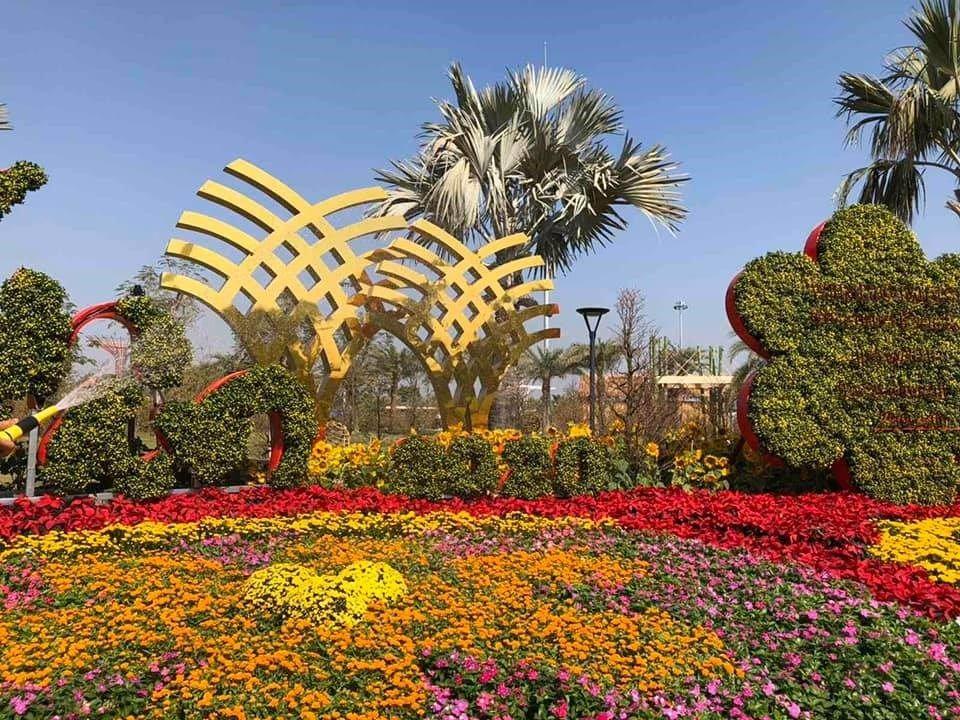 Tiểu cảnh trong lễ hội hoa mai phú quý được tổ chức tại công viên ánh sáng Vinhomes Grand Park